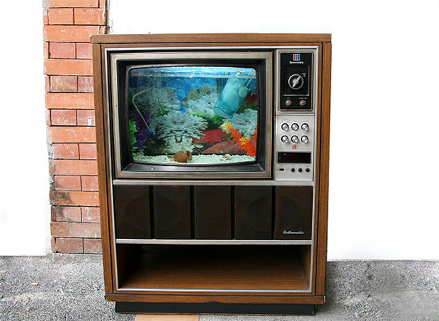 Old TV Fish Tank