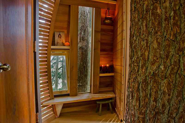 Hemloft Secret Tree House