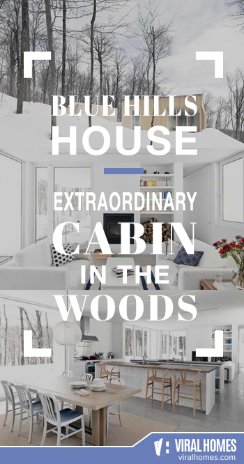 The Blue Hills House: A Not-So-Ordinary Cabin in the Woods