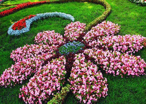 Floral Garden Layout