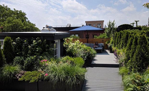 Park Slope Roof Garden